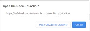 02-zoom launcher