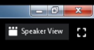 06-speaker view